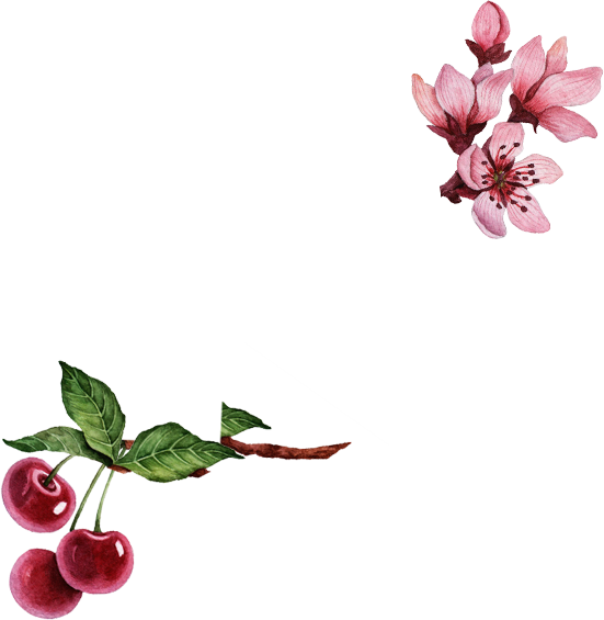 cherry and flower